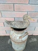 Antique Canvas Duck Decoy With Glass Eye 14 By 6 By 6 1/2 Armstrong