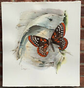 Wyoming Artist Lyle Tayson W/c Original Us 13andcent Postal Butterfly Stamp Painting