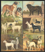 Cigarette/trade/cards. Gds Cards. Dogs.2006. Complete Set Of 20.