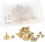 Woodyand039s Gold Digger 60 Deg. Traction Master Carbide Studs Gdp6-8755