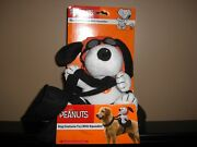 Christmas Peanuts Plush Snoopy Or Woodstock Witch Halloween Dog Costume Plush
