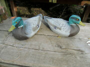 Old Airduk Duck Hunting Decoy Male Mallard Decor General Fibre Co. Parts As Is