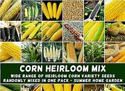 Sweet Corn And039heirloom Mixandrsquo 200+ Seeds Delicious Non-gmo Flavorful Yum Easy 2 Grow