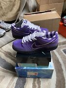 Nike Sb Dunk Low X Concepts Purple Lobster W/ Special Box Size 10 Bv1310-55