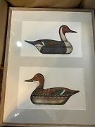 Rare Huge Arthur Nevin Pintail Drake And Pintail Hen Dual Print -signed/framed
