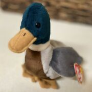 Very Rare Ty Beanie Baby Jake The Mallard Drake Duck With All 7 Mistakes