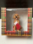 Sandicast Christmas Ornament Dog Golden Doodle With Christmas Sock New With Box