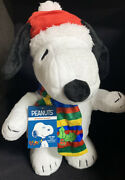 Peanuts Animated Snoopy 2020 Ears Move Linus Lucy Song Holiday 70 Yrs Schulz Nwt
