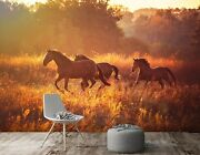 3d Horse Meadow D1036 Animal Wallpaper Mural Self-adhesive Removable Honey
