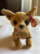 Rare- Tiny The Chi Chi, Ty Beanie Baby Babies- Retired With Errors Chihuahua Dog
