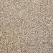 Super 20mm Thick Luxurious Beige Action Back Saxony 5m Wide Carpet Andpound48.99mandsup2