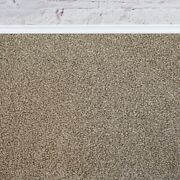Super 20mm Thick Luxurious Taupe Action Back Saxony 5m Wide Carpet Andpound48.99mandsup2