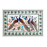 30 X 48 Inches Marble Coffee Table Top Peacock Design Inlaid Dining Table Top