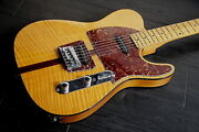Hohner Madcat Telecaster The Prinz Early Model W/soft Case F/s