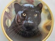 Cat Kitty Lenox Collector Plate Black Panther Artist Qua Big Cats Of World