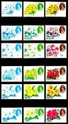 Niue 1981 1-10 Orchids And Hibiscus Flowers And Queen Elizabeth Ii Proofs 18v