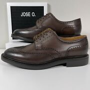 Polo Asher Leather Wingtip Brown Mens Dress Shoes Size 10 485534