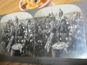 Old Antique Nice Cotton Picking Grinders Black Americana Stereoview Card
