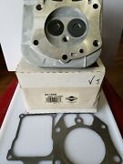 Briggs And Stratton Cylinder Head 841666 - Oem Packaging - New - K1d