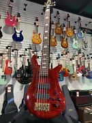 Spector Euro5 Lx 5-string Electric Bass Black Cherry Authorized Dealer