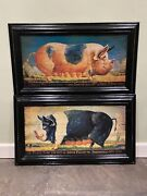Large Decorative Pair Of Vintage Prize Pig And Sow Print Signs Man Cave Pub Sign