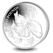2021 British Indian Ocean Territory Andpound2 Parrotfish Crown Coin In Capsule