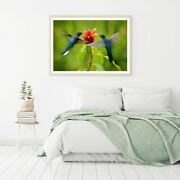 Humming Birds And Flower Photograph Print Premium Poster High Quality Choose Sizes