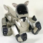Sony Aibo Ers-210 Entertainment Robot Pet Dog Gold Many Accessories Set