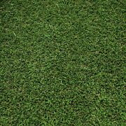 Hollywood Elite 38mm Thick Dense Realistic Feel Artificial Grass 5m Wide