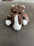 Very Rare Absolutely Mint Ty Beanie Baby Bruno Hard To Find In This Condition