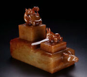 5 China Natural Hetian Jade Dynasty Dragon Turtle Beast Face Seal Stamp Signet