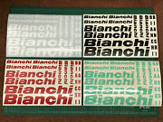 Bianchi Cycling Stickers Decals Custom Sizes Colours Bike Frame Fork Mtb Road