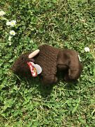 Very Rare Ty Beanie Baby Roam The Buffalo Mint Retired With Tag