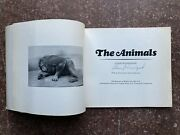 Rare 1969 Signed By Garry Winogrand The Animals 1st Photobook Moma Parr Roth