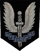 Sas Special Air Service British Army Embroidered Silver Wired Patch