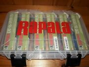 6 Rapala Dt 16 Fishing Lure Crankbait - Different Colors - W/ Tackle Box - New