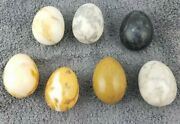 Lot Of 7 Large Natural Stone Alabaster Marble Granite Polished Eggs Decore