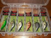 6 Rapala Dt 6 Fishing Lure Crankbait - Different Colors - W/ Tackle Box - New