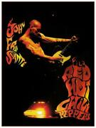 John Frusciante - Poster - Red Hot Chili Peppers Fender Tele - Wall Art Print