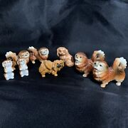 Vintage Brown And White Ceramic/wood Pekingese Dog Family Lot Of 8 Japan Flaw