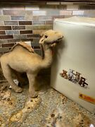 Steiff Dromedar 35 Camel 14 Inches 066948 New With Tags Button And Box