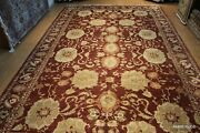Great Deal 11and039 X 17and039 Handmade Fine Quality Wool Lrage Rug Maroon Burgundy Pm75
