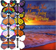 Miss You Much Card With Flying Butterfly