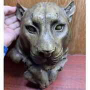 Ancient Roman Bronze Military Statue Fragment Head Of Panther Very Rare 1kg 21cm