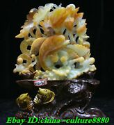 15 China Nataural Green Jade Carving Wealth Money Waterlily Flower Dolphin