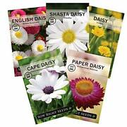 - Daisy Flower Seed Collection For Planting, Beautiful Annual And Perennial
