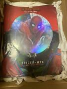 Hot Toys Domestic Spiderman Homemade Suit Edition