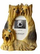 """Shih Tzu Yorkie Picture Frame Dog And Puppies Family 3.5"""" X 5"""" Photo Frame"""