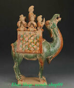 21 Antique Old Chinese Tang Sancai Pottery Woman Beauty Ride Camel Llama Statue