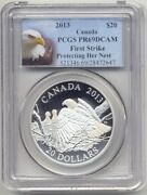 2013 Canada 20 Silver Bald Eagle Proof Pcgs Pr69 First Strike Protecting Nest